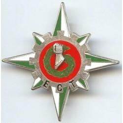 6° Division Blindée / ECT