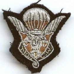 1° Bataillon de Para...